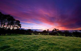 Фото бесплатно поле, деревня, трава