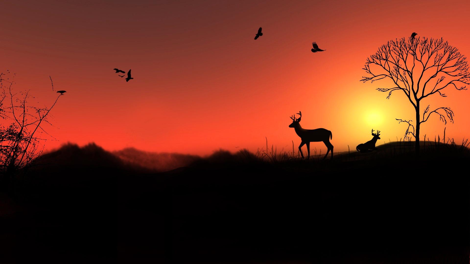 солнце, закат, красный