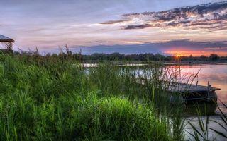 Бесплатные фото вода,небо,река,солнце,лес,деревья,горизонт