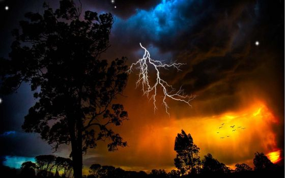 Заставки деревья, гроза, молния