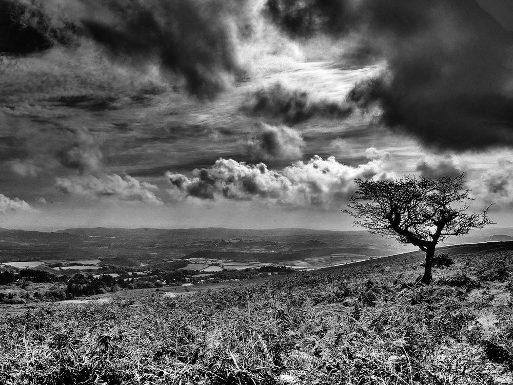 Фото бесплатно холмы, облака, тучи, небо, горизонт, трава, деревья, лето, тепло, природа, пейзажи, пейзажи - скачать на рабочий стол
