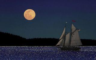 Бесплатные фото луна,спутник,небо,лес,горизонт,море,океан