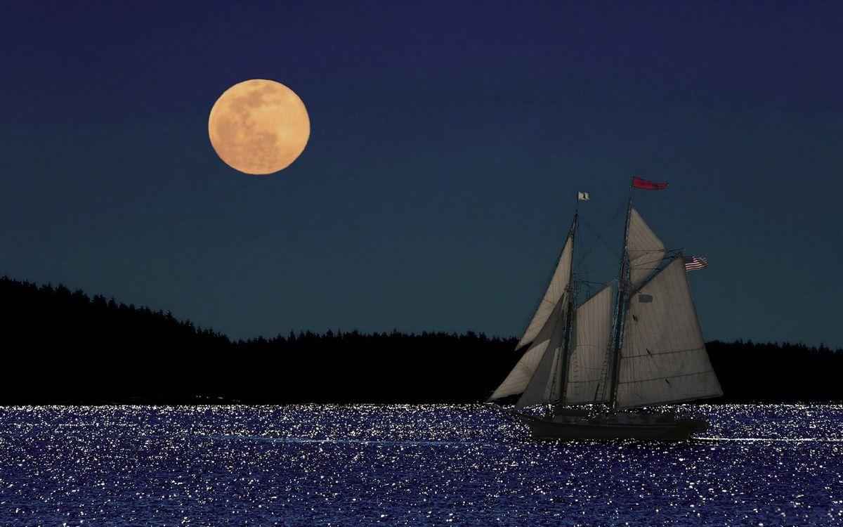 Photos for free moon, companion, sky - to the desktop