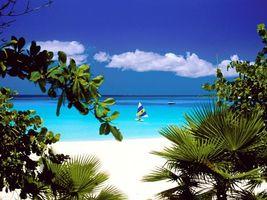 Обои море, песок, небо, пальмы, облака, яхты, природа