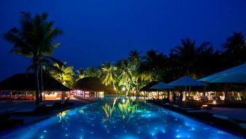 Фото бесплатно пальмы, ночь, небо, жара, лето, пейзажи