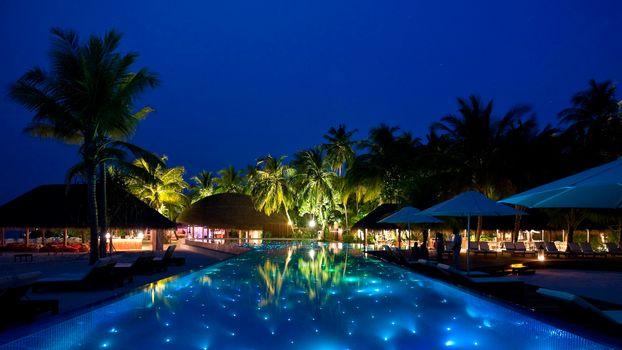 Бесплатные фото пальмы,ночь,небо,жара,лето,пейзажи
