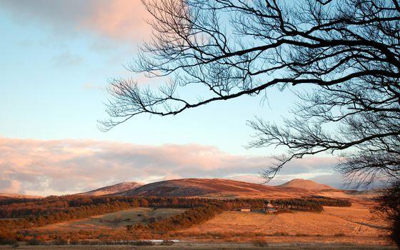 Фото бесплатно степь, холмы, деревья, небо, облака, пустыня, пейзажи