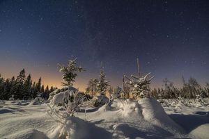 Бесплатные фото Sweden,Mangskog,Arvika,зима,мороз,ночь,лес