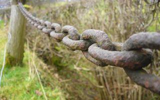 Заставки цепь, ржавчина, дерево, трава, ограждение, природа, разное