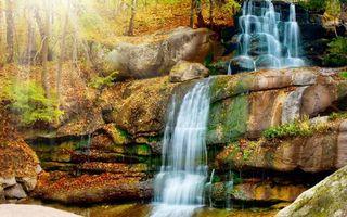 Бесплатные фото водопад,камни,скала,обрыв,деревья,листья,осень