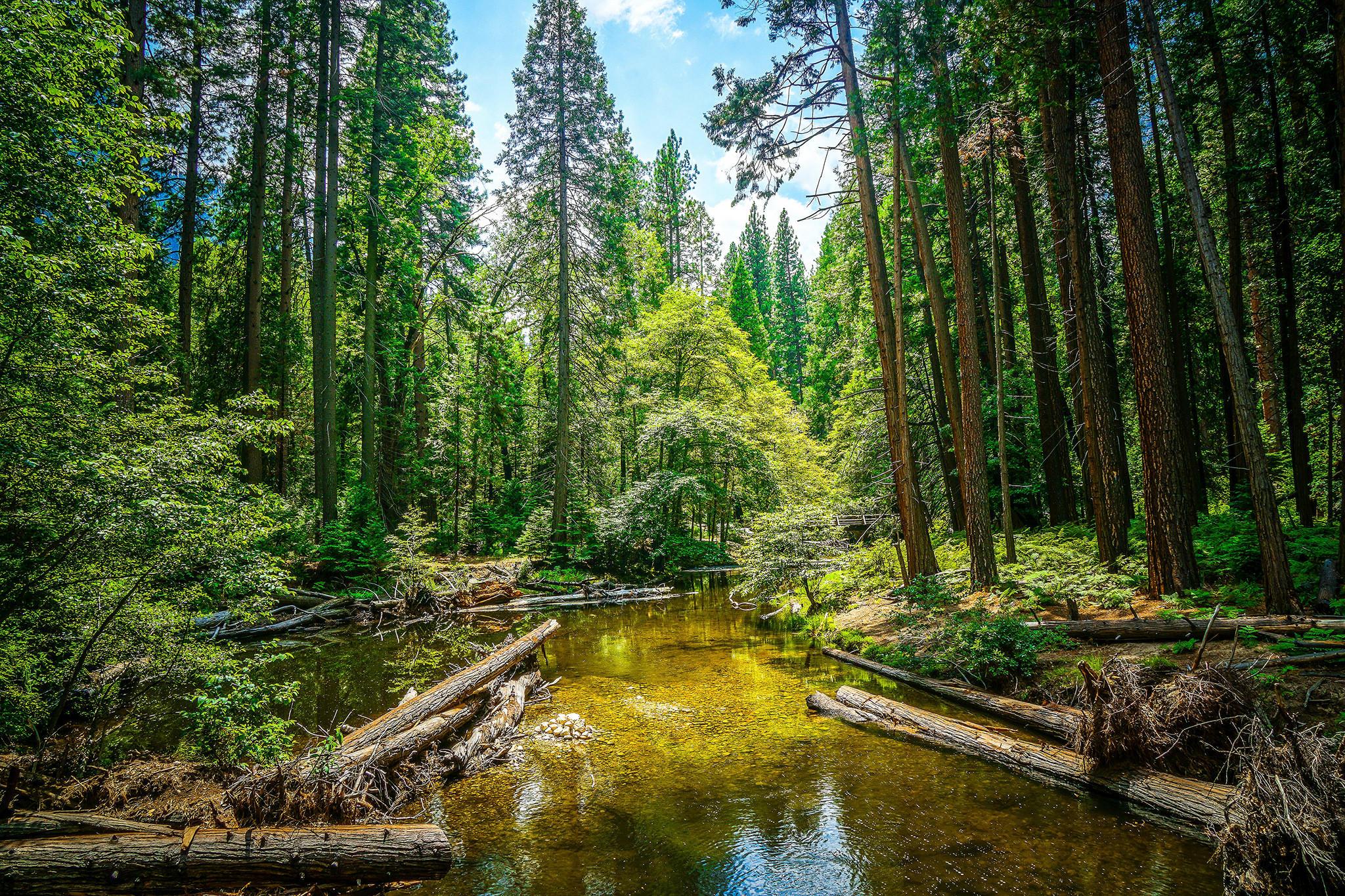 Йосемитский национальный парк, Yosemite National Park, Калифорния