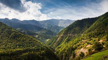 Бесплатные фото горы,лес,деревья,трава,зеленая,небо,тучи