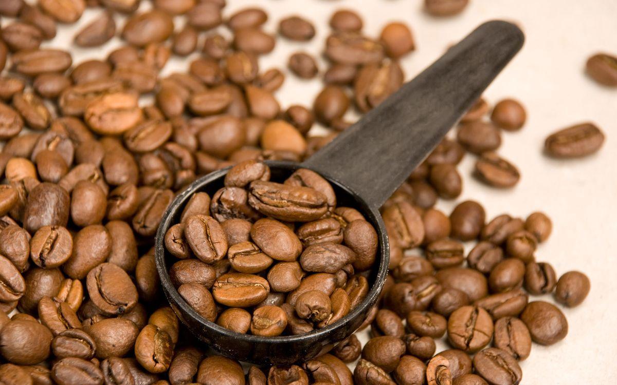 Фото бесплатно кофе, зерна, коричневые, много, ложка, деревянная, напитки, напитки