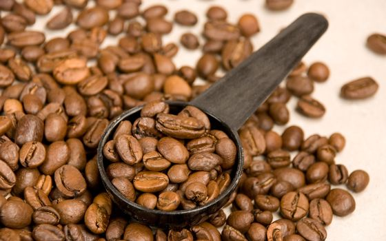 Photo free coffee, grains, brown