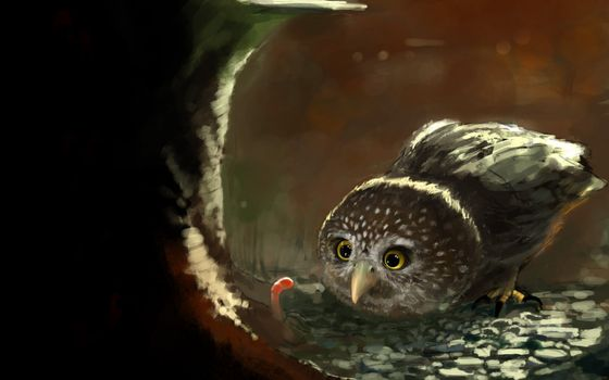 Photo free drawing, owl, earth