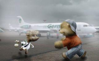 Бесплатные фото самолет,пассажирский,аэродром,мишка,кепка,джинсы,ежик