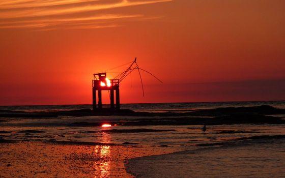 Photo free ocean, sunset, seagulls