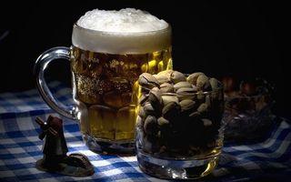 Фото бесплатно пиво, кружка, фисташки
