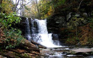 Бесплатные фото лес, река, водопад, камни, брызги, листва, природа