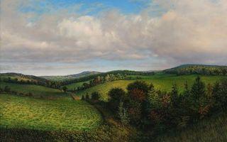 Бесплатные фото лес, поле, деревья, трава, тучи, облака, небо