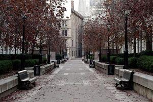 Бесплатные фото парк,деревья,листва,осень,листопад,скамейки,дорожка