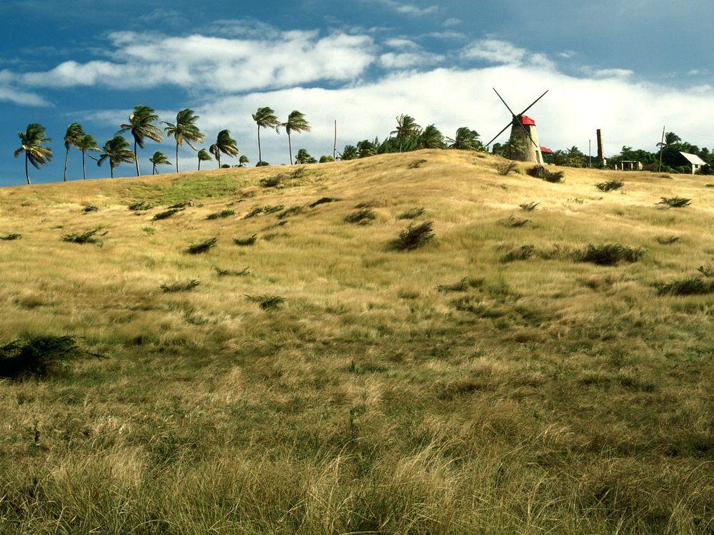 Фото бесплатно поле, трава, деревья, мельница, небо, облака, природа, природа