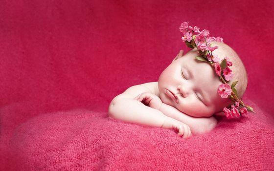 Бесплатные фото ребенок,спит,венок,цветы,материал,розовый,разное