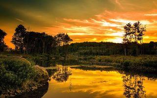Бесплатные фото река, лес, отражение, закат, солнце, небо, облака