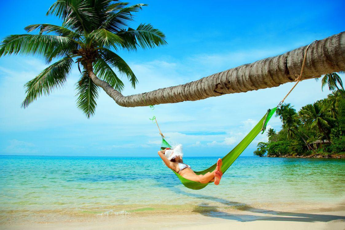Фото бесплатно тропики, море, пляж, пальмы, гамак, пейзажи, пейзажи