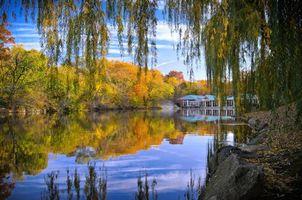 Фото бесплатно центральный парк нью-йорка, осень, пруд