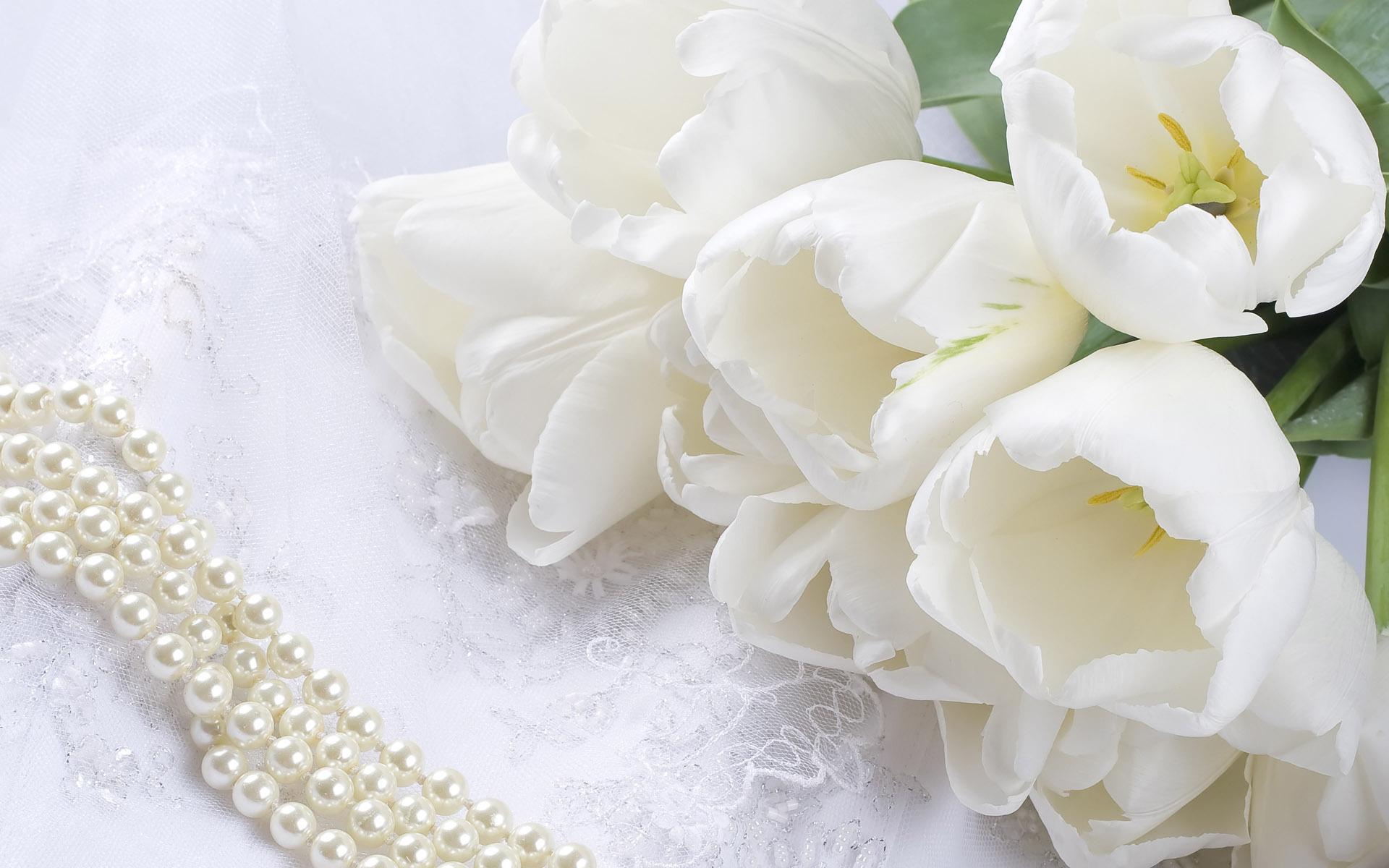 Цветы белый жемчуг