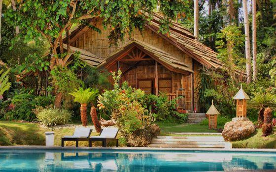 Фото бесплатно дача, тропики, пальмы
