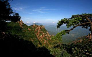 Бесплатные фото горы,высота,деревья,трава,небо,облака,природа