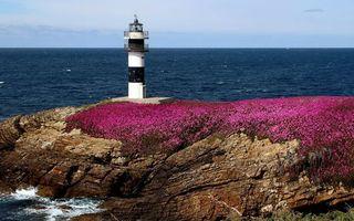 Заставки маяк,цветы,камни,небо,вода,океан,берег