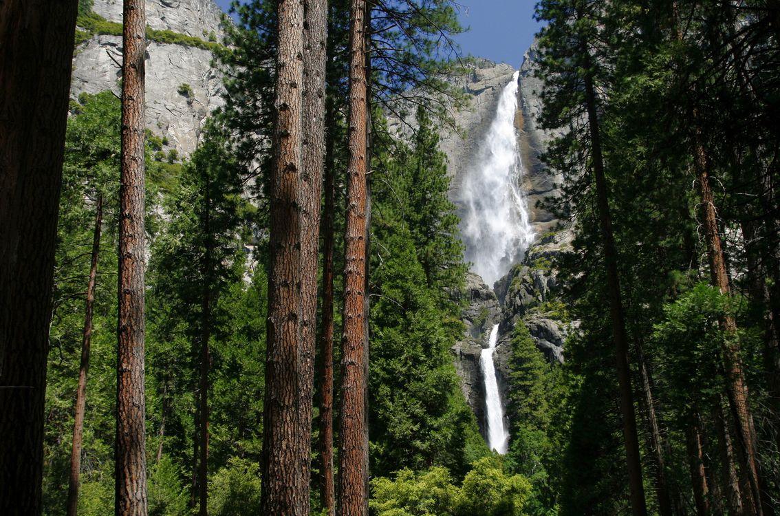 Фото бесплатно водопад, скала, лес - на рабочий стол