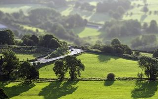 Бесплатные фото трава,поле,деревья,кусты,дорога,асфальт,машины