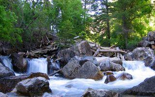 Фото бесплатно валуны, озеро, лес