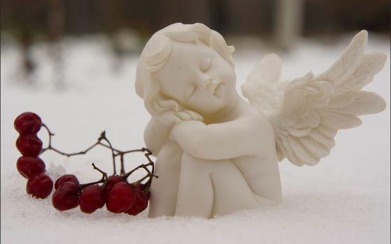 Фото бесплатно ягоды, сон, лефортовский парк