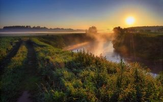 Бесплатные фото дорога,полевая,трава,река,туман,деревья,восход