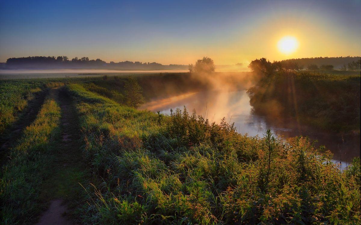Фото бесплатно дорога, полевая, трава, река, туман, деревья, восход, солнце, природа, пейзажи, пейзажи