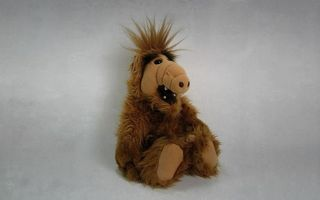 Фото бесплатно игрушка, прическа, шерсть