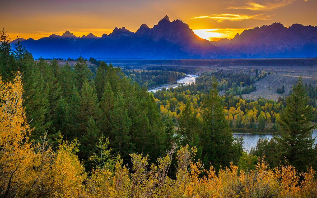 Фото бесплатно лес, река, горы, солнце, листья, небо, зелень, природа, природа