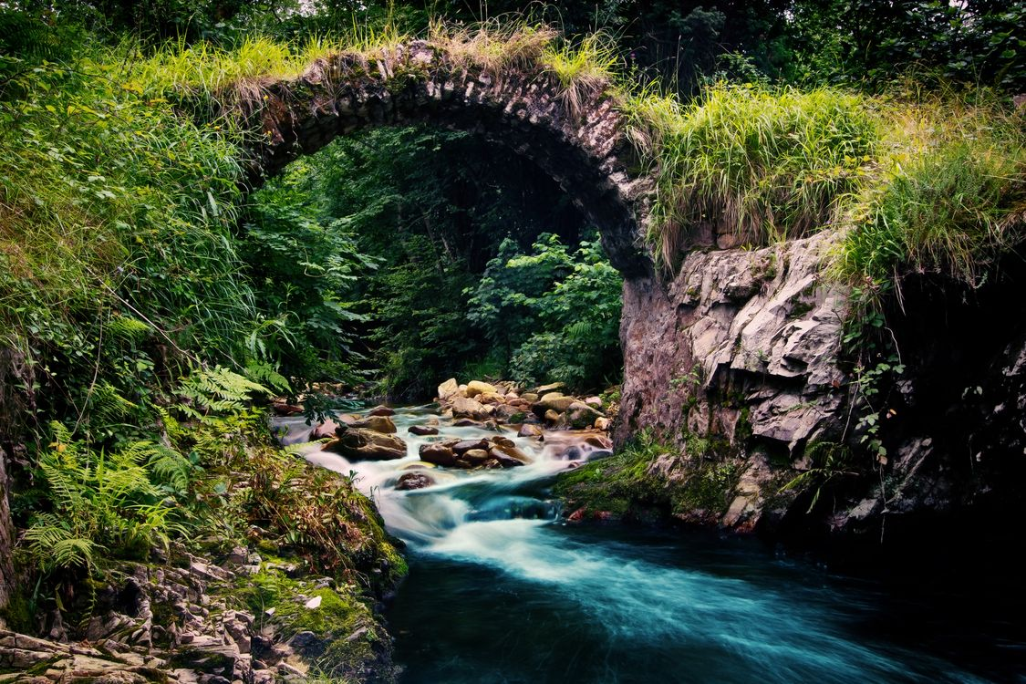 Фото бесплатно мостик, каменный, дуга, река, лес, природа, природа