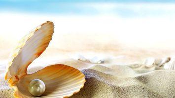 Бесплатные фото раковина,жемчужина,песок,разное