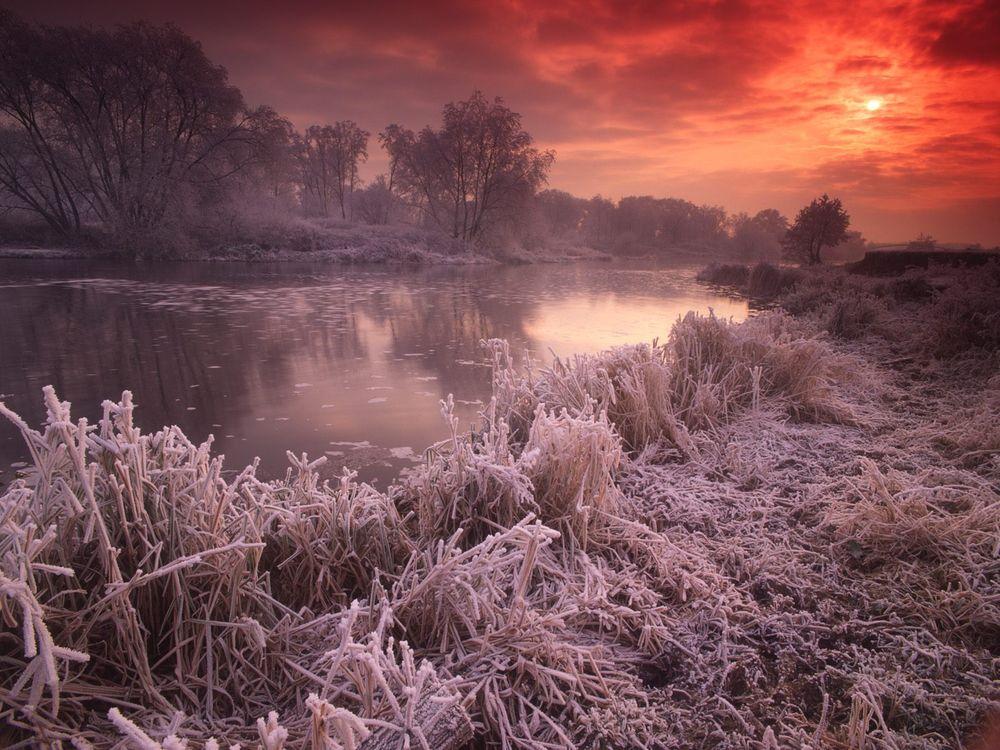 Фото бесплатно река, льдинки, трава, деревья, мороз, иней, закат, солнце, природа, природа
