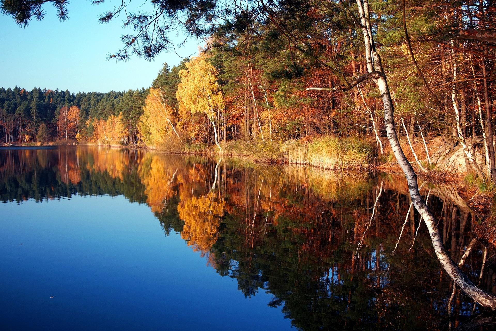Обои silver lake, turawa, poland, осенний