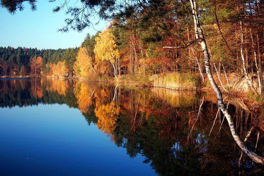 Бесплатные фото silver lake,turawa,poland,осенний,пейзаж,деревья,листья,желтые,озеро,отражение,осень,природа