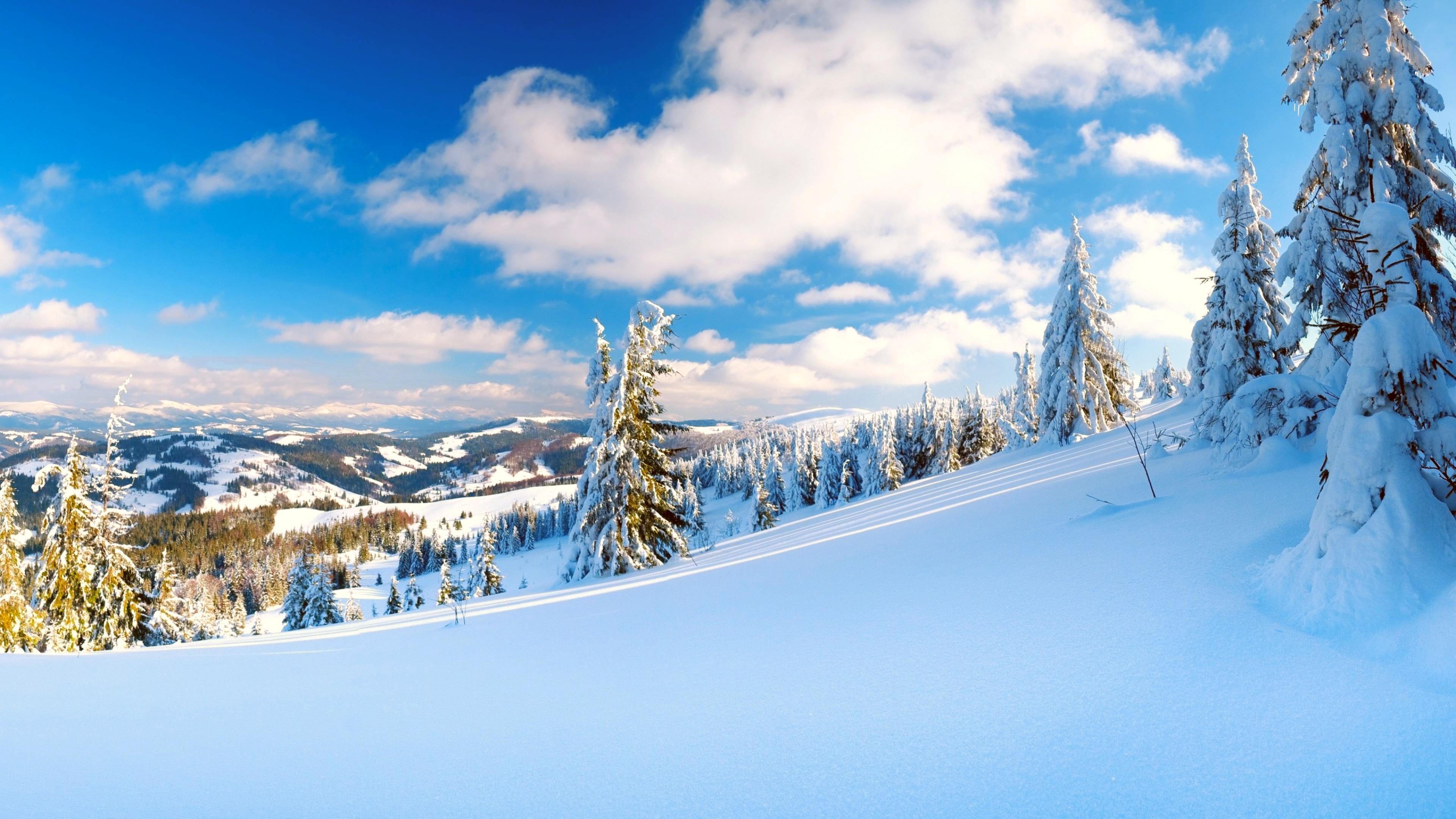 снег горы деревья холмы без регистрации