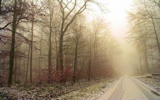 Фото бесплатно осенний снег, лес, дорога