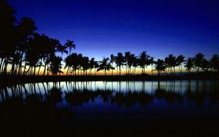 Бесплатные фото пальмы,закат,рисованные,озеро,отражение,рендеринг